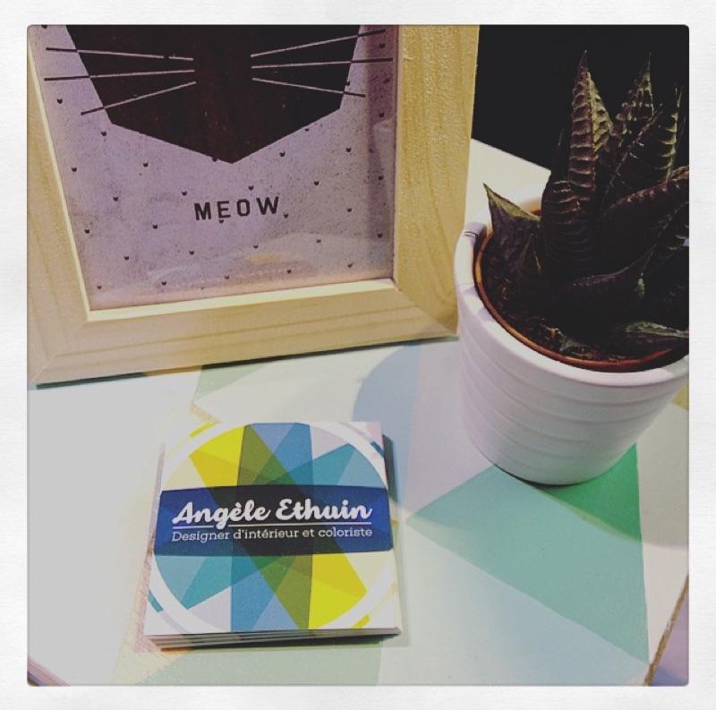 Angèle Ethuin - Cartes de visites colorées